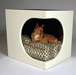 Doggiedasherie Sparky Pet Bed with Cushion Set serves as End Table